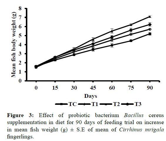 fisheriesscience-probiotic-bacterium