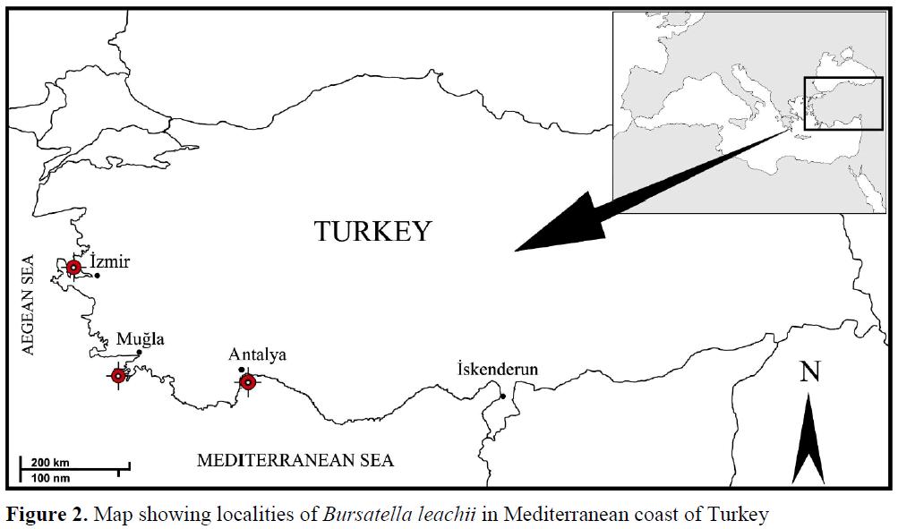 fisheriessciences-Mediterranean-coast