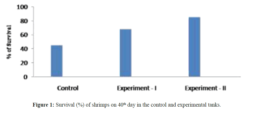 fisheriessciences-experimental-tanks